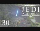 パダワンがジェダイマスターを目指してスターウォーズジェダイフォールンオーダーを実況プレイする.30[STAR WARS JEDI FALLEN ORDER]