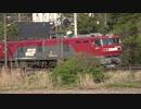 東北本線コンテナ貨物列車 3053レ 3054レ 3058レ