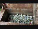 【社会科見学】空き缶をリサイクル会社に持って行ってみた【リサイクル】