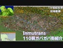 Inmutrans110弱ガバガバ街紹介