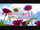 【アッチのオリジナル曲 No.09】百日草