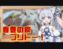 【なんちゃってブリトー】葵ちゃんの簡単おつまみで雑にのみたーい!!!!!!!!!!!