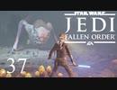 パダワンがジェダイマスターを目指してスターウォーズジェダイフォールンオーダーを実況プレイする.37[STAR WARS JEDI FALLEN ORDER]