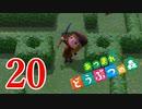 迷路島の冒険【あつまれどうぶつの森】20日目