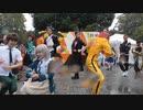 【東大生が】2019駒場祭⑨東大踊々夢【踊ってみた】Part1