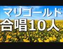 【10人合唱】あいみょん「マリーゴールド」男4人+女6人 カバー ~Cover~ 歌ってみた (原曲キー)