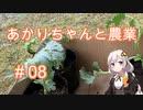 あかりちゃんと農業#08『スイカとかぼちゃとウリ』