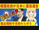 【韓国の反応】「対韓輸出規制、今月末までに立場を明らかにせよ」韓国政府が日本に最後通告【世界の〇〇にゅーす】【youtubeは不適切&削除済】