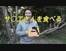 【野外飯】サザエの壺焼きを巨大流木で焼く!
