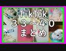 #48 Tik Tok 33~40まとめ 番外編5【ハムスター物語】