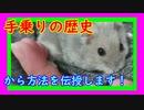 憧れの手乗りハムスターまでの道程  The road to the longing Hand riding Hamster. #49【ハムスター物語】