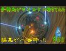 【実況】手羽先がマイルドに活きてみた【ゼルダの伝説ブレスオブザワイルド】Part60