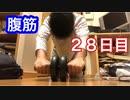 【検証】腹筋ローラーで何日で腹筋が割れるのか【28日目】