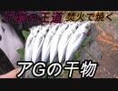 【野外飯】干物の王道アジを焚火で焼く!