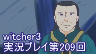 探し人を求めてwitcher3実況プレイ第209回