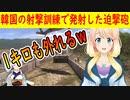 【韓国の反応】射撃訓練中に発射した迫撃砲が1キロ外れ、野山で爆発・・・【世界の〇〇にゅーす】