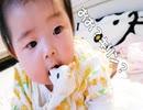 赤ちゃんはキリンを食べます
