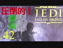 パダワンがジェダイマスターを目指してスターウォーズジェダイフォールンオーダーを実況プレイする.42[STAR WARS JEDI FALLEN ORDER]