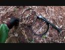 (普通に山歩き回)変態忍者の、狩猟&有害鳥獣駆除従事活動記・その108