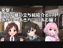 突撃!シロP様の立ち絵紹介その1!あかり・あきら・りあむ編!