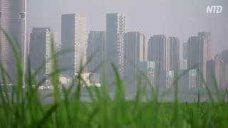 中国メディア「不動産市場が回復」 専門家「罠です」