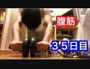 【検証】腹筋ローラーで何日で腹筋が割れるのか【35日目】