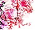 【UTAU音源拡張巻き舌配布】-ERROR【月音ラミ Ver2.1β】