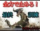 【ゆっくり実況】老山龍の侵攻【wii版 モンスターハンターG】