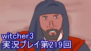 探し人を求めてwitcher3実況プレイ第219回
