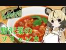 おつかれごはん#8「野沢菜漬けのソリャンカ」