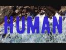 HUMAN/N-flym