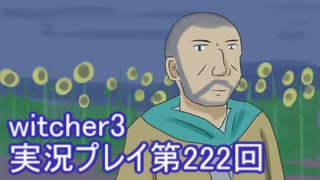 探し人を求めてwitcher3実況プレイ第222回