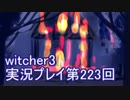 探し人を求めてwitcher3実況プレイ第223回