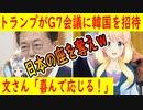【韓国の反応】文大統領「喜んで応じる」トランプ大統領が韓国をG7に招待。【世界の〇〇にゅーす】