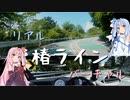 【リアルドライブ車載動画】箱根 椿ライン【バーチャルドライブ ch.】