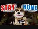 パペットに歌わせてみた|STAY HOME(オリジナル曲 歌 Vocaloid 作詞 作曲:銀杏ふみ)