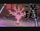 【ポケモン剣盾】呪い祟る珊瑚と探求の道