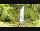 ある日の「滝之下大滝公園」の滝の姿を7分弱【自然音】