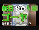 【毎日ゴーヤ】毎日58秒でゴーヤの成長をみる動画(36日目)