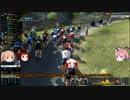 【PCM2019】 真そのゆっくりは3年目を走る その14 「ツール・ド・フランス」編 その4