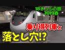 【迷列車の旅】青春18きっぷの乗り得列車と落とし穴?【18きっぷ2019春三日目終電編】