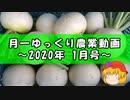 月一ゆっくり野菜栽培 2020年1月