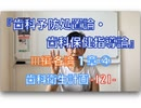 『歯科予防処置論・歯科保健指導論』Ⅲ編 各論 1章-④ 歯科衛生計画立案[2]