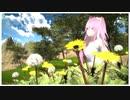 【この世界の片隅に】たんぽぽ/コトリンゴ(Covered by 遥ノ音ハル)【弾き語りしてみた】