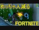 SwitchからPS4に移行した人のフォートナイト実況プレイPart20【FORTNITE】