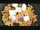 音フェチ【咀嚼音】ASMR!手作りマシュマロポップコーンを食べてみた♪出来立てホヤホヤ!!