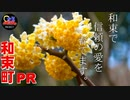【京都和束町PR動画#11】1万円札の元作ってます!