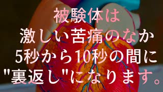 秘封が暴くSCP pt.48 【裏回】