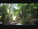 【自転車】仏坂峠に登る (大阪府能勢町) 野間の大けやき ロードバイク