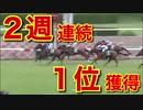 【4】競馬で勝つためにスポーツ紙の「数値」を分析し、データ化。利益を出すことにこだわり、検証します。